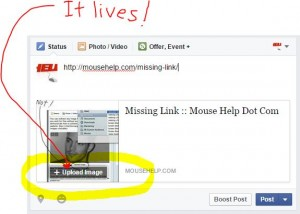 MissingLink on Business Page